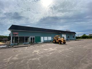 Bâtisse commerciale à vendre à Mansfield-et-Pontefract, Outaouais, 221, Rue  Principale, 12532980 - Centris.ca