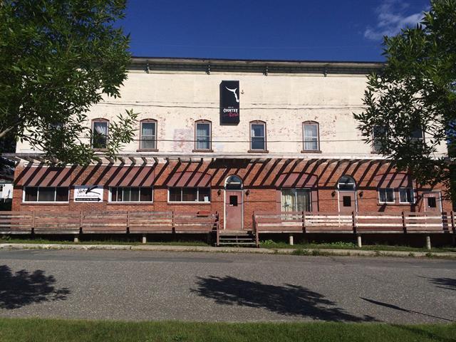 Bâtisse commerciale à vendre à Danville, Estrie, 22, Rue du Dépôt, 16101132 - Centris.ca