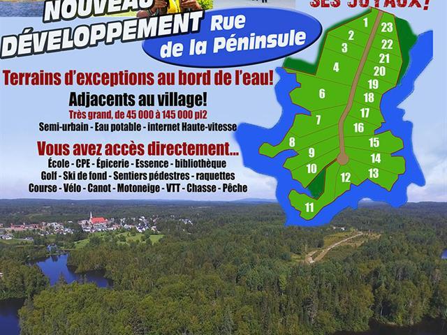 Terrain à vendre à Bégin, Saguenay/Lac-Saint-Jean, 16, Chemin  Truchon, 9516868 - Centris.ca