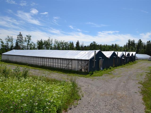 Ferme à vendre à Saint-Fulgence, Saguenay/Lac-Saint-Jean, 102, Rang  Saint-Louis, 16139778 - Centris.ca