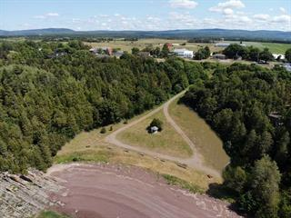 Lot for sale in Saint-Jean-Port-Joli, Chaudière-Appalaches, 275, Avenue  De Gaspé Est, 26333023 - Centris.ca