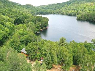 Lot for sale in Amherst, Laurentides, Chemin  Louis-Pépin, 28929825 - Centris.ca