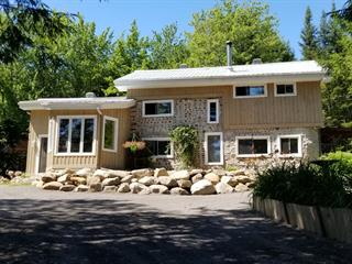 Maison à vendre à Saint-Gabriel-de-Brandon, Lanaudière, 36, Chemin du Lac-Hamelin, 14377935 - Centris.ca