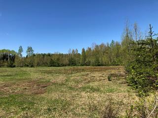 Terrain à vendre à Saint-Tite, Mauricie, 1414, Route du Lac-Pierre-Paul, 27971413 - Centris.ca
