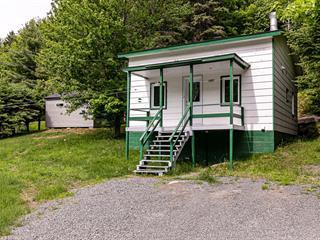 Maison à vendre à Sainte-Agathe-des-Monts, Laurentides, 1021, Chemin de la Montagne, 28732178 - Centris.ca