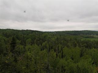 Land for sale in Duhamel-Ouest, Abitibi-Témiscamingue, Route  101 Sud, 17650948 - Centris.ca