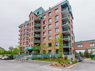 Condo / Apartment for rent in Gatineau (Aylmer), Outaouais, 1180, Chemin d'Aylmer, apt. 505, 9980950 - Centris.ca