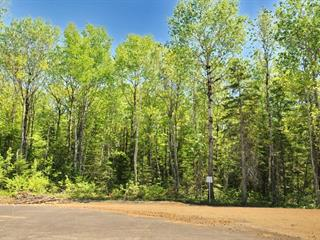 Lot for sale in Baie-Saint-Paul, Capitale-Nationale, Rue  Laure-Conan, 11306960 - Centris.ca