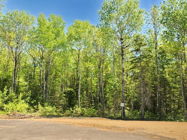 Terrain à vendre à Baie-Saint-Paul, Capitale-Nationale, Rue  Laure-Conan, 11306960 - Centris.ca