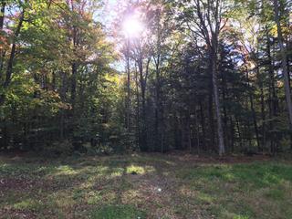 Terrain à vendre à Saint-Ambroise-de-Kildare, Lanaudière, Chemin  Sainte-Beatrix, 10449750 - Centris.ca