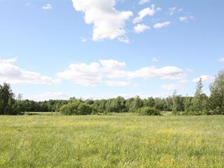 Terrain à vendre à Bedford - Canton, Montérégie, Rue  Racine, 9713315 - Centris.ca