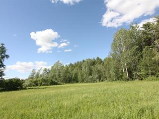 Terrain à vendre à Bedford - Canton, Montérégie, Rue  Racine, 16021507 - Centris.ca