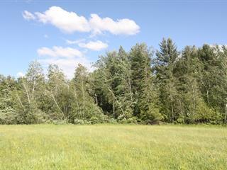Terrain à vendre à Bedford - Canton, Montérégie, Rue  Racine, 22134979 - Centris.ca