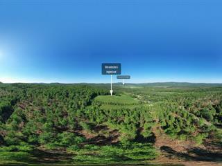 Terrain à vendre à Saint-Jacques-le-Majeur-de-Wolfestown, Chaudière-Appalaches, 4e Rang, 24496422 - Centris.ca