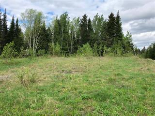 Lot for sale in Alma, Saguenay/Lac-Saint-Jean, 2300, Chemin des Sentiers-Verts, 11419012 - Centris.ca