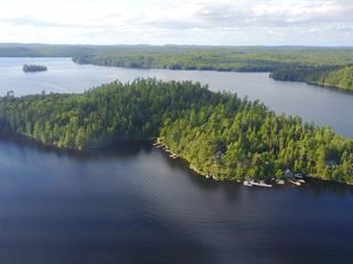 Bâtisse commerciale à vendre à Les Lacs-du-Témiscamingue, Abitibi-Témiscamingue, Île  Thompson, 25364696 - Centris.ca