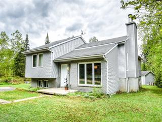 Maison à vendre à Sainte-Agathe-des-Monts, Laurentides, 5409, Chemin  Prévost, 14330861 - Centris.ca