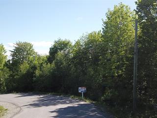 Terrain à vendre à Tingwick, Centre-du-Québec, 191, Chemin du Hameau, 25672819 - Centris.ca