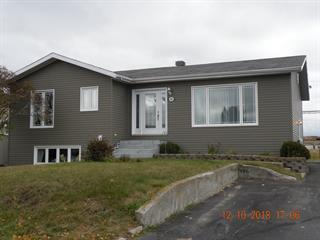 House for sale in La Sarre, Abitibi-Témiscamingue, 360, Carré du Centre-Ville, 20610785 - Centris.ca