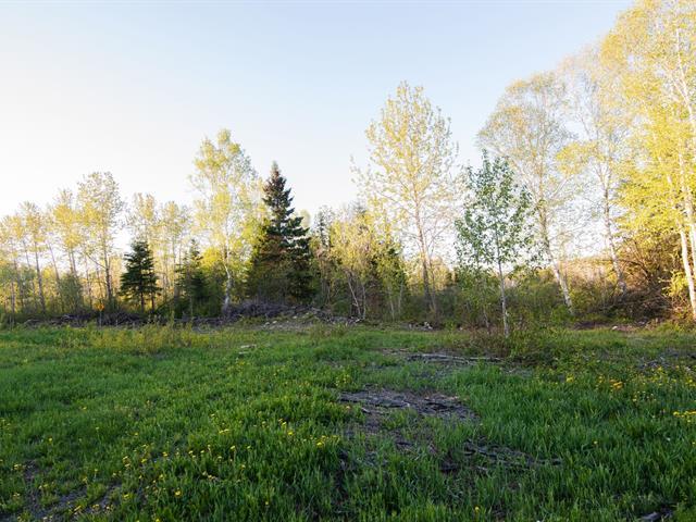 Terre à vendre à Biencourt, Bas-Saint-Laurent, Chemin du Lac, 28729499 - Centris.ca