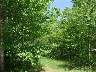 Lot for sale in Shannon, Capitale-Nationale, 33, Rue  Maple, 24434804 - Centris.ca