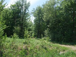 Terrain à vendre à Shannon, Capitale-Nationale, 62, Rue  Elm, 24247443 - Centris.ca