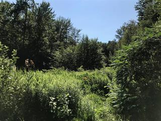 Terrain à vendre à Saint-Alphonse-de-Granby, Montérégie, 1, Rue  Principale, 27786818 - Centris.ca