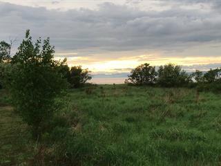 Terrain à vendre à Saint-Roch-des-Aulnaies, Chaudière-Appalaches, Chemin des Berges, 12370772 - Centris.ca