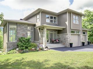 Maison à vendre à Orford, Estrie, 324, Rue du Montagnac, 25987073 - Centris.ca