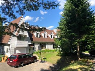 Duplex à vendre à Saint-Sauveur, Laurentides, 1123 - 1125, Chemin de la Paix, 23451748 - Centris.ca