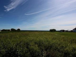 Terrain à vendre à Bonaventure, Gaspésie/Îles-de-la-Madeleine, Chemin  Thivierge, 28433289 - Centris.ca
