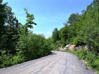 Terrain à vendre à Saint-Adolphe-d'Howard, Laurentides, Chemin  Ora, 9773547 - Centris.ca
