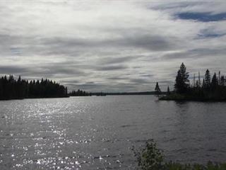 Terrain à vendre à Sainte-Monique (Saguenay/Lac-Saint-Jean), Saguenay/Lac-Saint-Jean, 118, Chemin des Trois-Baies, 11561341 - Centris.ca