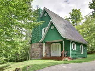 Maison à vendre à Mont-Tremblant, Laurentides, 120, Chemin de la Grosse-Roche, 19617989 - Centris.ca