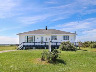 Maison à vendre à Les Îles-de-la-Madeleine, Gaspésie/Îles-de-la-Madeleine, 1733, Chemin de l'Étang-du-Nord, 12065809 - Centris.ca