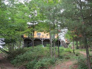 Maison à vendre à Kazabazua, Outaouais, 180, Chemin du Lac-Danford Ouest, 12535946 - Centris.ca