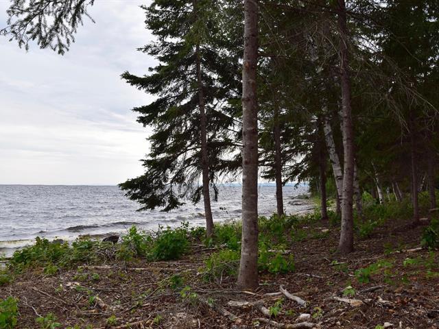 Terrain à vendre à Roberval, Saguenay/Lac-Saint-Jean, 56, Rue du Domaine-des-Bernaches, 22806750 - Centris.ca