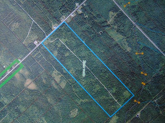 Terre à vendre à Saint-Louis-de-Gonzague (Chaudière-Appalaches), Chaudière-Appalaches, Route de la Grande-Ligne, 28195961 - Centris.ca