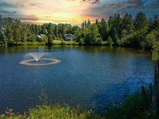 Fermette à vendre à Saints-Anges, Chaudière-Appalaches, 300Z - 304Z, 3e Rang, 14267044 - Centris.ca