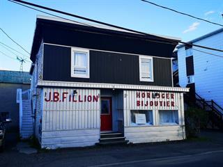 Immeuble à revenus à vendre à Matane, Bas-Saint-Laurent, 167 - 169, Rue  Saint-Georges, 20107408 - Centris.ca
