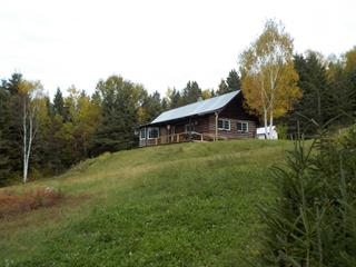 House for sale in Tadoussac, Côte-Nord, 1859, Route  172, 12821653 - Centris.ca