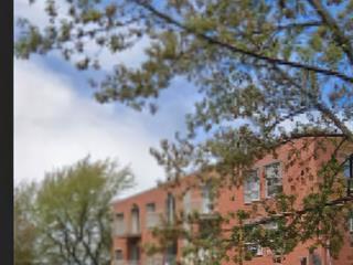 Condo / Appartement à louer à Montréal (Saint-Laurent), Montréal (Île), 960, Avenue  Sainte-Croix, app. 105B, 16465448 - Centris.ca