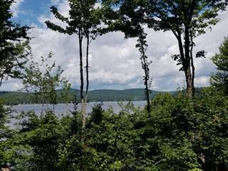 Terrain à vendre à Lac-Sergent, Capitale-Nationale, Chemin  Tour-du-Lac Sud, 23767813 - Centris.ca