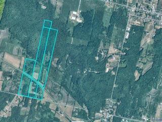 Hobby farm for sale in Sainte-Justine-de-Newton, Montérégie, 3470Z, 4e Rang, 9911768 - Centris.ca