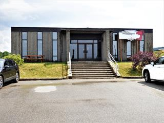 Commercial building for sale in Chambord, Saguenay/Lac-Saint-Jean, 74, Route  169, 22683544 - Centris.ca