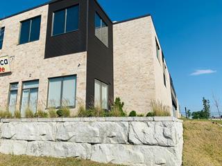 Industrial unit for rent in Montréal (Saint-Laurent), Montréal (Island), 310, Rue  Ness, 15224142 - Centris.ca