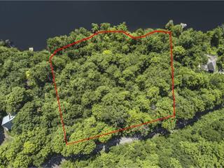 Terrain à vendre à Austin, Estrie, Chemin des Geais-Bleus, 27621697 - Centris.ca