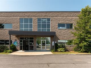 Local industriel à vendre à Candiac, Montérégie, 44, Rue  Paul-Gauguin, 13113621 - Centris.ca