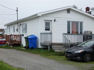 Maison à vendre à La Sarre, Abitibi-Témiscamingue, 14, 2e Avenue Est, 20879417 - Centris.ca