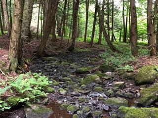 Land for sale in Lac-Brome, Montérégie, Chemin  Johnston, 13717823 - Centris.ca